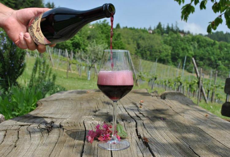 Emilia-Romagna wine