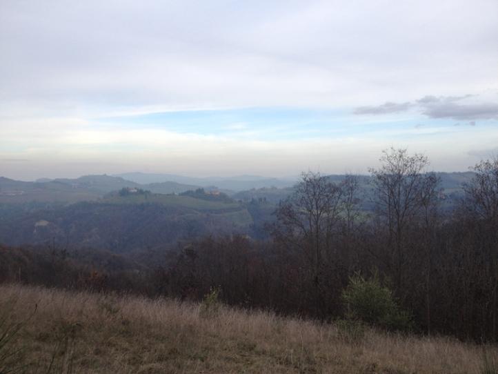 Bologna hills