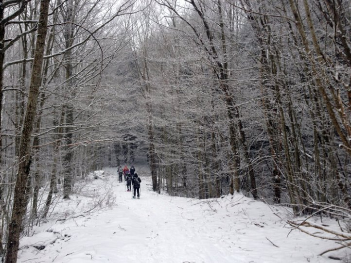 snowshoeing in Corno Alle Scale Regional Park