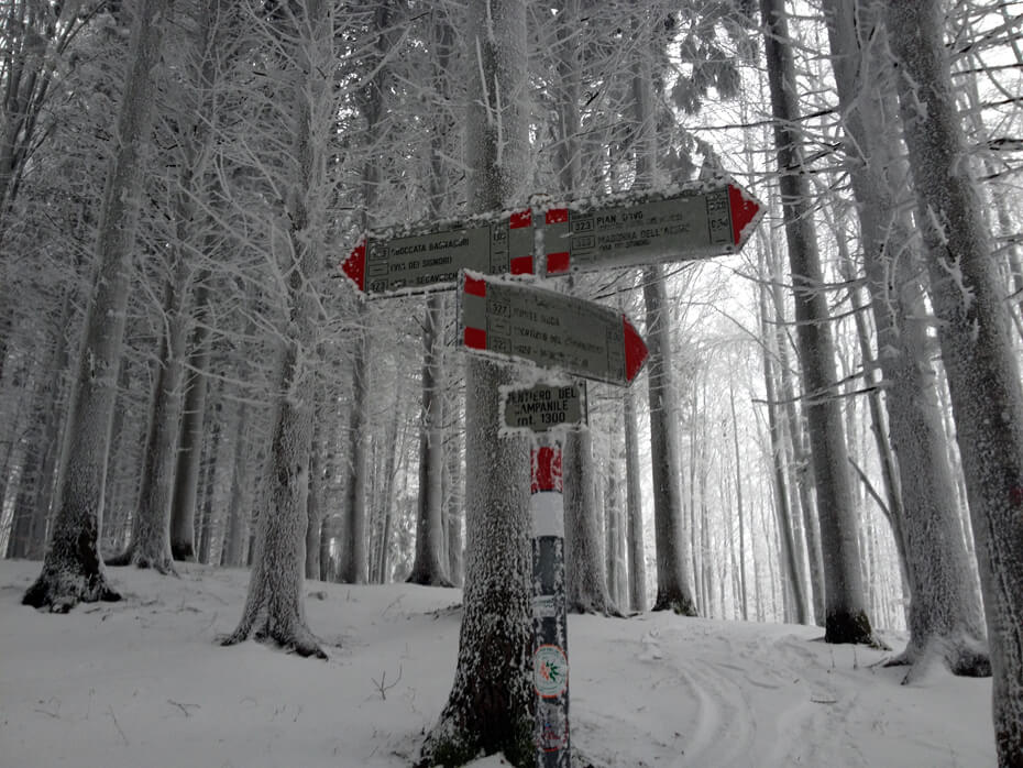 snowshoeing La Nuda