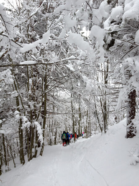 winter activities in Emilia-Romagna