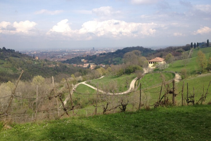 walking itineraries in Bologna