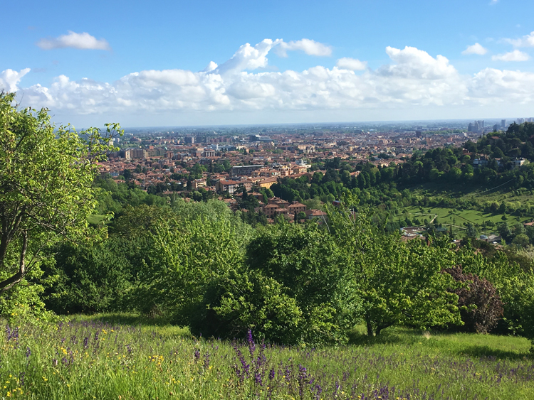 top walks in Bologna