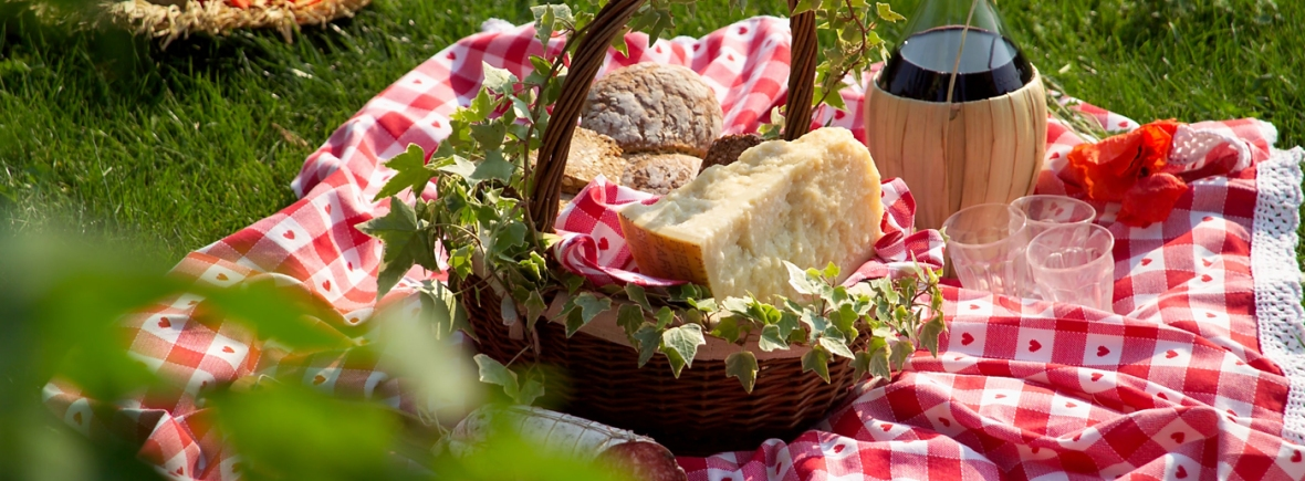 Picnic in Emilia-Romagna with Parmigiano Reggiano and wine on the grass